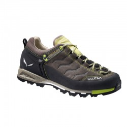 Salewa WS Mtn trainer Femme - taupe